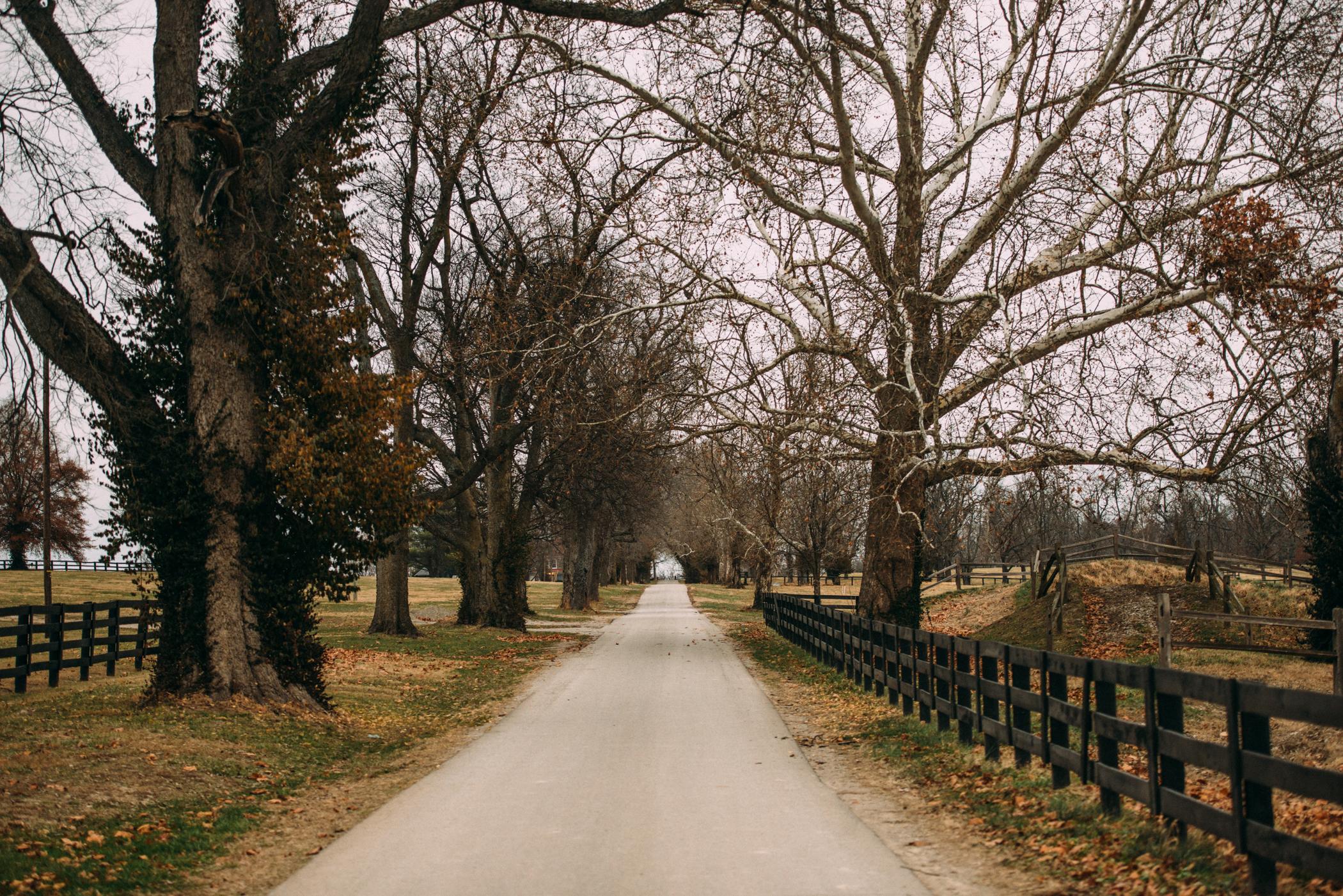 Kentucky Horse Park | Rivetville