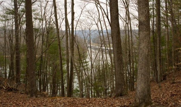 """View from the """"Top of the World"""" trail in Caney Creek"""