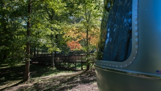 A little early fall color