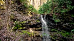 White Oak Sink Waterfall